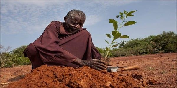 Photo de Burkina Faso: cet homme a arrêté le désert rien qu'avec ses mains
