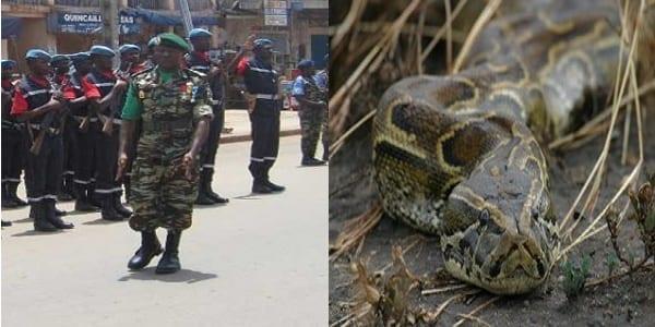 Photo de Cameroun : après que les populations aient tué un serpent, un colonel se suicide dans son bureau