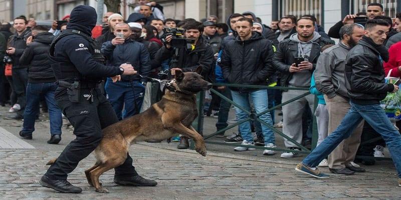 molenbeek-police-raid-on-terror-suspects-in-brussels-suburb_5567335