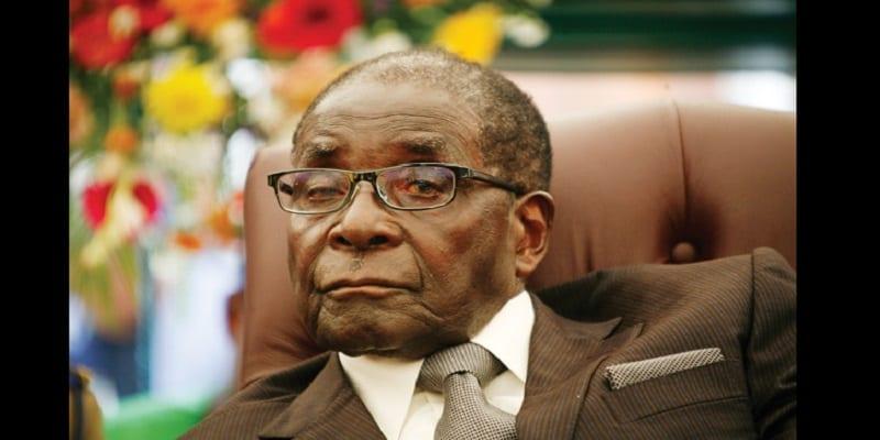 Photo de Zimbabwe: Deux hommes arrêtés pour avoir abattu un arbre du Président Mugabe