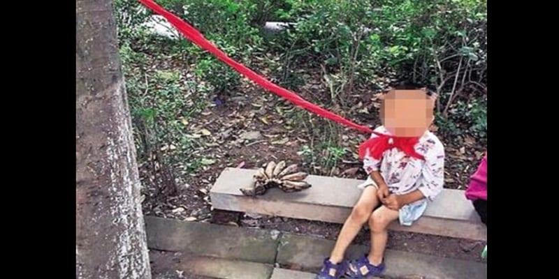 """Photo de Un garçon de 4 ans attaché à un arbre pour avoir été trop """"désobéissant"""" : PHOTO"""