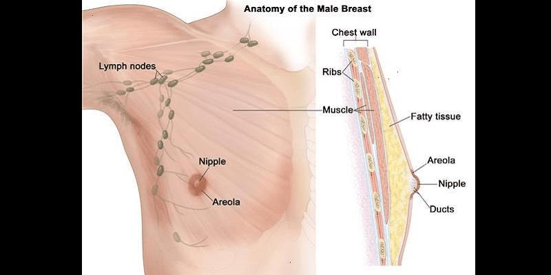 Photo de Cancer du sein : La maladie qui rend les hommes honteux