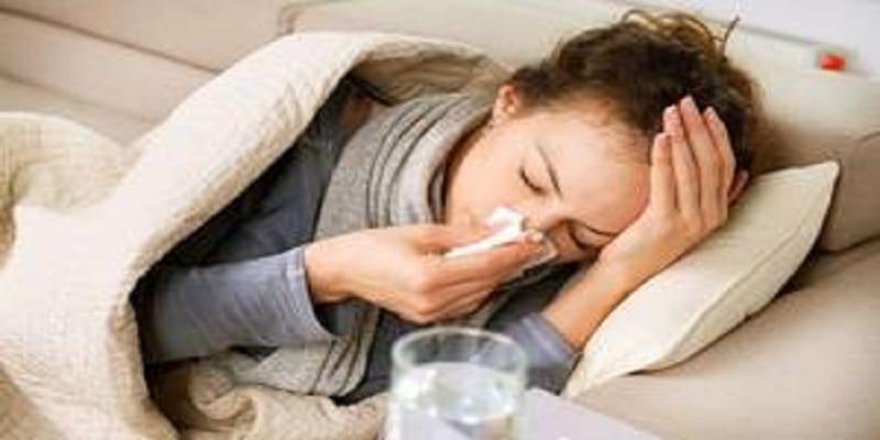 Photo de Les scientifiques ont découvert l'origine de notre rhume : les dromadaires