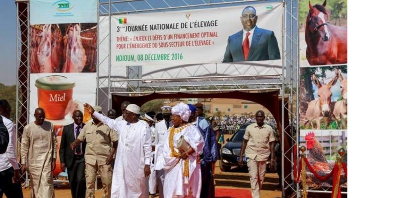 Photo de Sénégal: La garde rapprochée de Macky Sall infiltrée par un homme armé