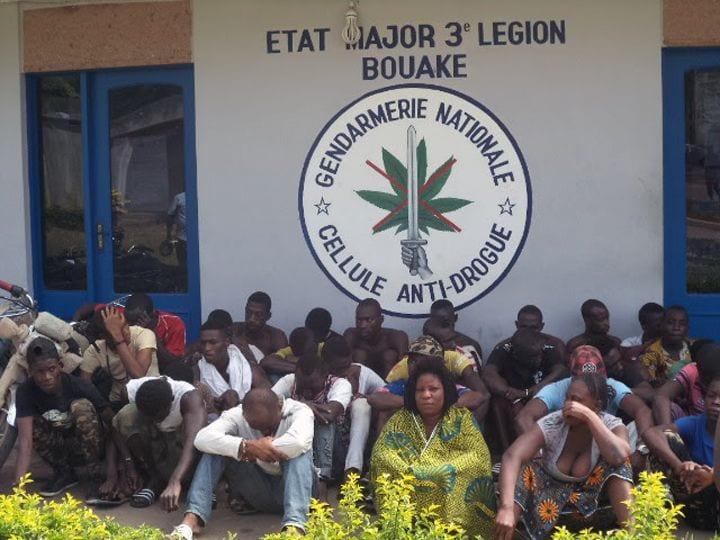 Photo de Côte d'Ivoire: 52 personnes interpellées, quatre fumoirs détruits à Bouaké