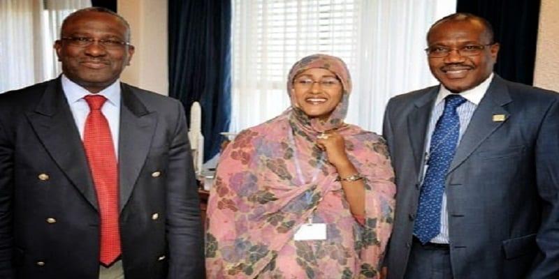 Photo de Sommet de l'UA: La candidate mauritanienne prise en flagrant délit de vol