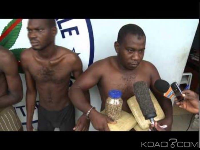 Photo de Côte d'ivoire: 28 consommateurs de drogues arrêtés dont des militaires