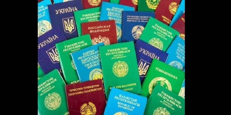 Photo de Voici pourquoi les passeports sont faits en seulement quatre couleurs