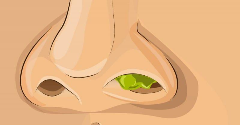 Photo de Santé : les sécrétions nasales sont bonnes pour notre corps (étude)