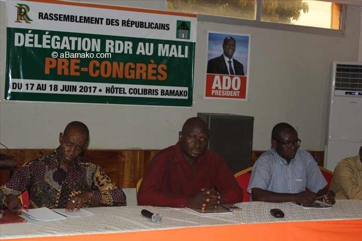 Photo de Politique: Le RDR Mali plaide pour l'intégration de la diaspora en 2020