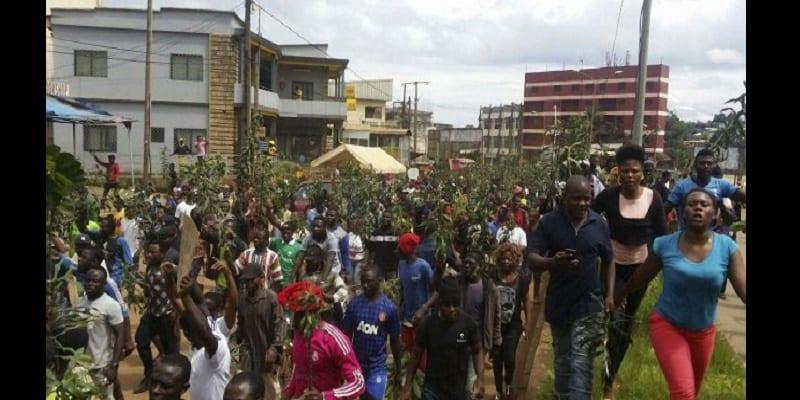 Photo de Cameroun/crise anglophone: retour sur ses origines, voilà déjà un an!