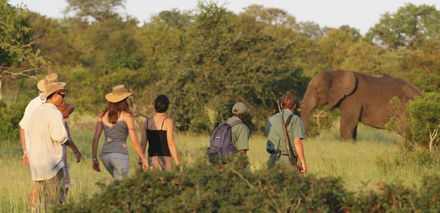 Photo de Découvrez 6 applications de Smartphones indispensables pour voyager en Afrique!
