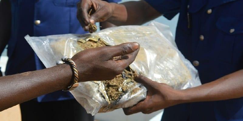 Photo de Sénégal : Un proche d'un célèbre lutteur cité dans une affaire de drogue