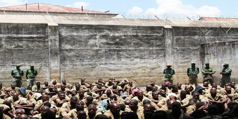 Photo de Zimbabwe: Le président accorde une grâce à des détenus. La raison