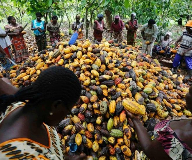 Photo de Côte d'Ivoire : Création du premier syndicat féminin pour le droit des travailleuses
