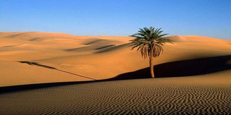 Photo de Afrique: L'avancée du désert du Sahara en 100 ans est inquiétante