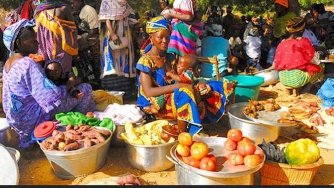 Photo de Insécurité alimentaire : 8 millions de personnes menacées en Afrique