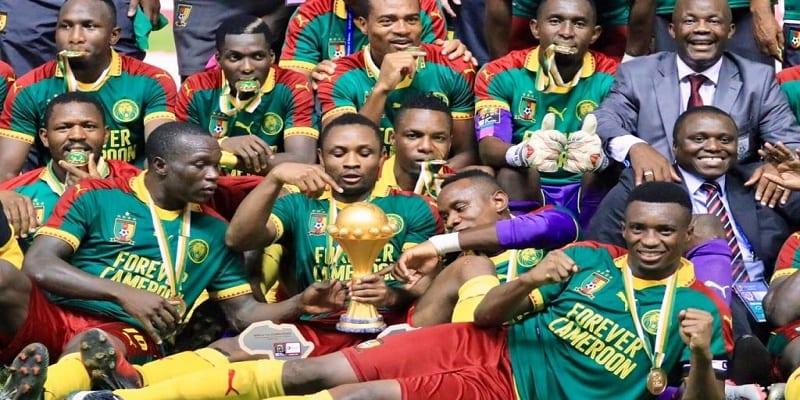 Photo de Cameroun: Deux ex-footballeurs hollandais à la tête des Lions indomptables