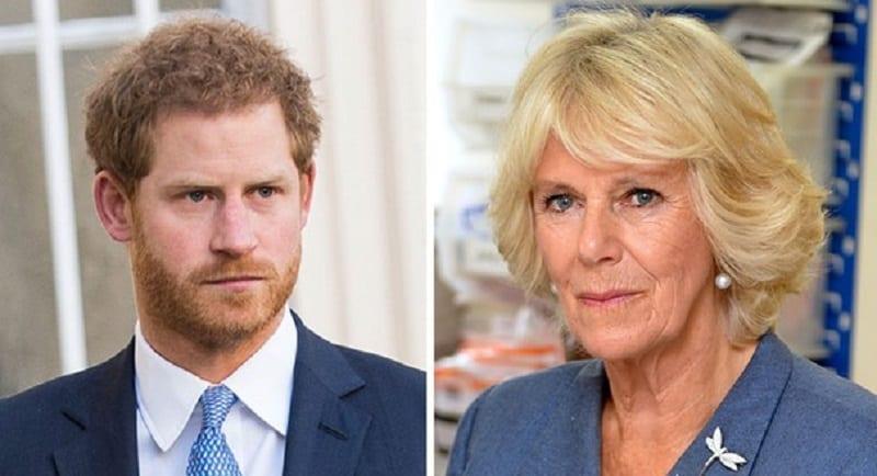 Photo de Le Prince Harry prend la défense de la rivale de sa mère