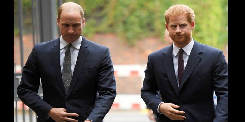 Photo de Les princes Harry et William en froid ?Une experte en langage corporel fait des révélations