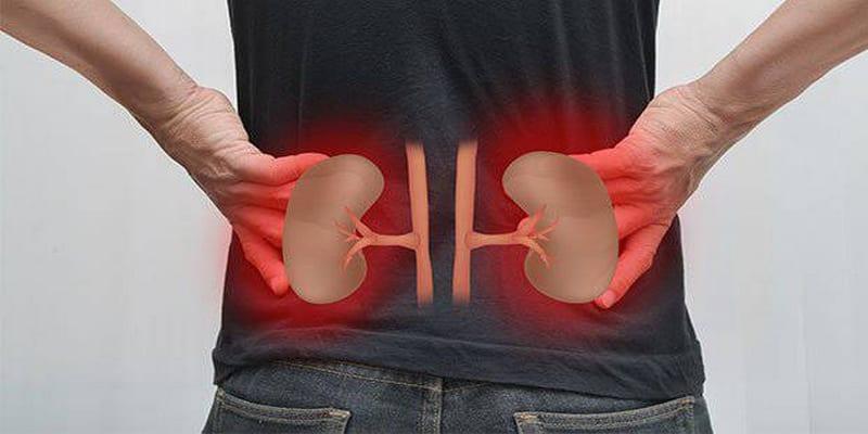 Photo de Santé: Vos reins sont-ils malades? 4 manières de le savoir !