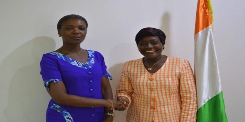 Photo de Agriculture: le karité ivoirien obtient la certification « bio »