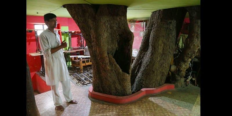 Photo de Inde : ils construisent leur maison autour d'un arbre (photos)