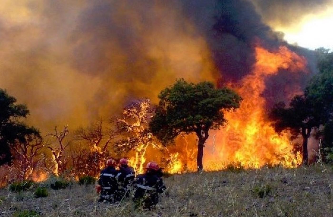 Photo de Algérie: Une partie du nord du pays ravagée par un incendie