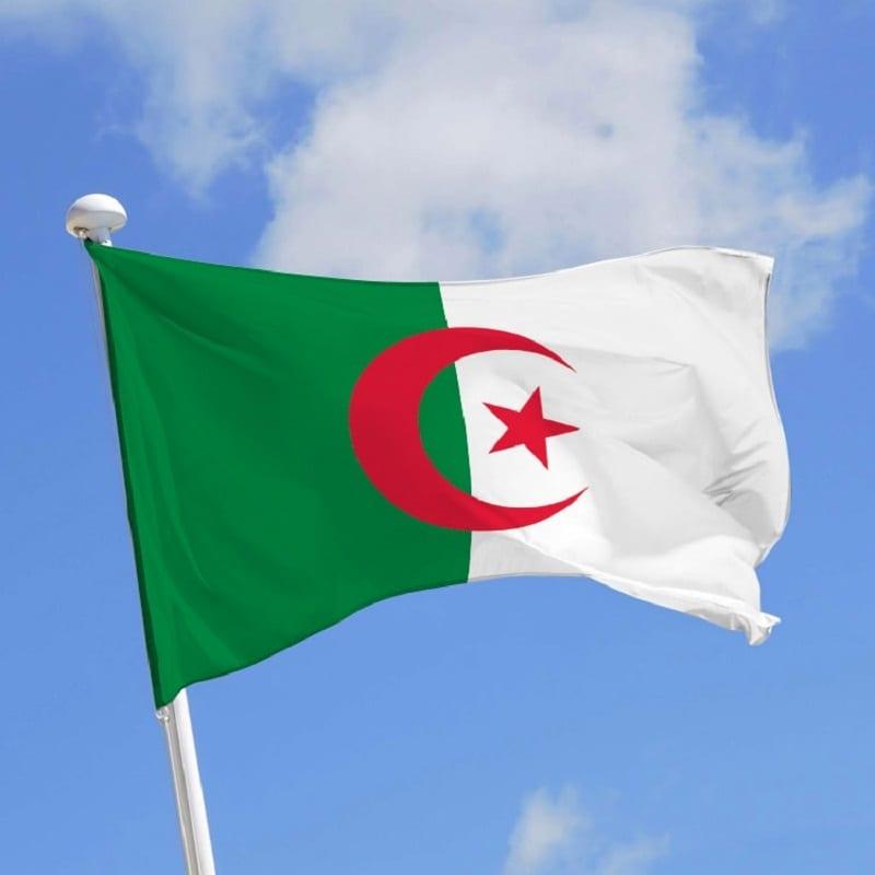 Photo de Algérie: une femme poignardée par son mari a été sauvée in extremis par des passants [Vidéo]