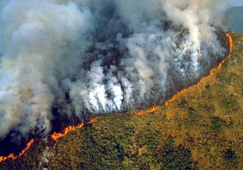 Photo de Brésil: Les feux dans la forêt amazonienne provoquent un émoi mondial