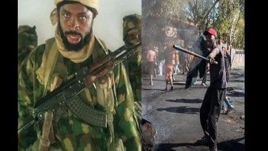 Photo de Xénophobie : les Nigérians en Afrique du Sud lancent un appel étonnant à Boko Haram-(vidéo)