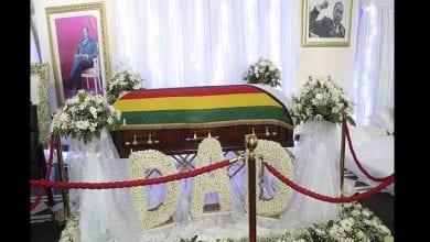 Photo de Robert Mugabe : bras de fer entre sa famille et le gouvernement