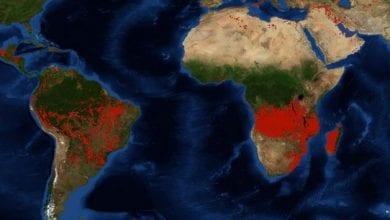 Photo de Questions africaines :  Le Bassin du Congo avait-il besoin d'importer des flammes ?