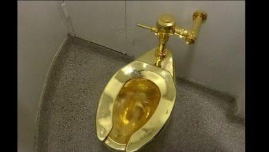 Photo de Royaume-Uni : un WC en or massif volé dans un palais
