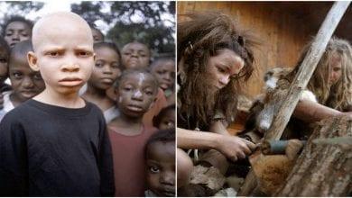 Photo de Découvrez comment les Européens ont eu la peau blanche – étude