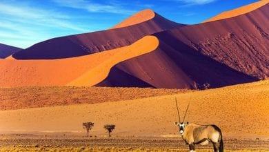 Photo de Les 10 plus beaux pays du monde: un seul pays africain dans le Top 10