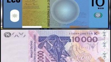 Photo de Changement du Franc CFA en ECO: découvrez les six pays africains qui critiquent cette initiative