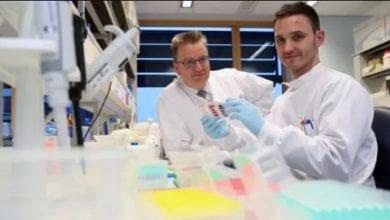 Photo de Découverte d'une cellule immunitaire qui détruit la plupart des types de cancer