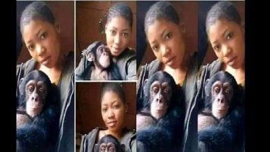 Photo de « Je préfère mon singe à un homme, il me satisfait au lit », dixit une jeune Nigériane