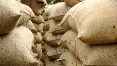 Photo de Côte d'Ivoire: 110 tonnes de noix de cajou saisies à la frontière avec le Ghana