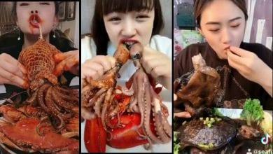 Photo de Chine: Interdiction de la consommation de chiens,  serpents et de chats à la suite du coronavirus