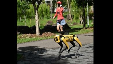 Photo de Covid-19: Singapour déploie un «chien» robot pour faire respecter la distanciation sociale (photos)