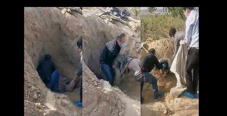 grave-alive