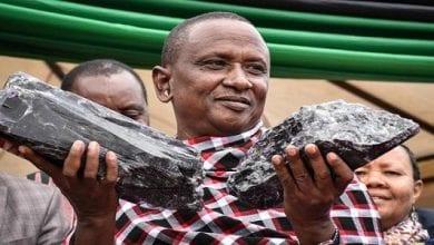 Photo de Tanzanie: un homme devient millionnaire en découvrant de grosses pierres précieuses