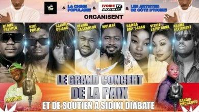 Photo de Présumé concert en soutien à Sidiki Diabaté: Vitale, Bebi Philip et Molière se désolidarisent