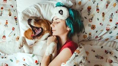 Photo de Etude: dormir avec un chien au lit serait mieux que dormir avec son ou sa partenaire