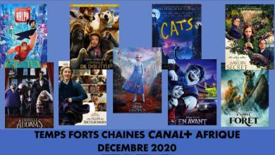 Photo de En décembre : CANAL+ annonce une programmation féerique