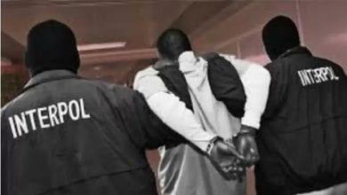 Photo de Interpol arrête plus de 20000 personnes dans le monde pour fraude en ligne