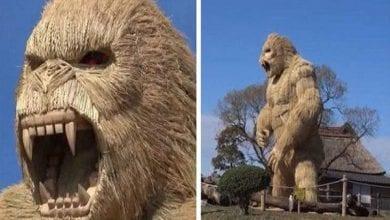 Photo de Japon : des villageois construisent un gorille géant pour faire peur au coronavirus